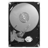 80GB Maxtor STM380215AS DiamondMax 21