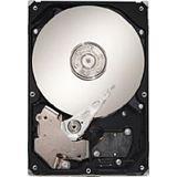 """500GB Maxtor STM3500320AS DiamondMax 22 7200U/m 32MB 3,5"""" (8,9cm) SATA II"""