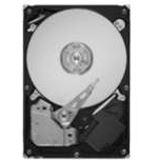 750GB Maxtor STM3750330AS 32MB 7200 U/min SATA