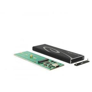 Delock Gehäuse USB3.1 für M.2 NGFF SSDs schwarz