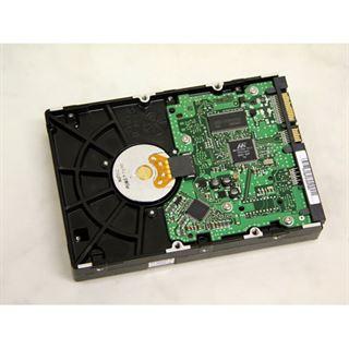 """320GB Samsung Spinpoint T166 HD321KJ 16MB 3.5"""" (8.9cm) SATA 6Gb/s"""