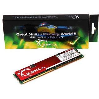 1024MB G.Skill DDR2-533 CL4 Bulk