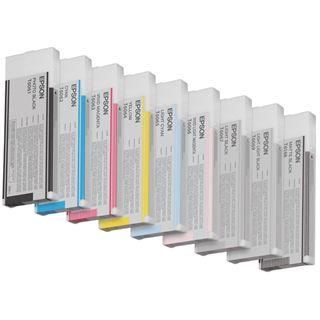 Epson Tinte C13T606700 schwarz hell