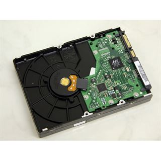 """320GB Samsung Spinpoint F1 HD322HJ 16MB 3.5"""" (8.9cm) SATA 3Gb/s"""