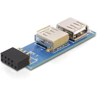 Delock 9pol USB 2.0 Adapter für 2x USB 2.0 Buchse (41820.)