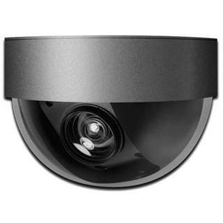 Digitus WCam Network DN-16058 Fixed Dome Kamera