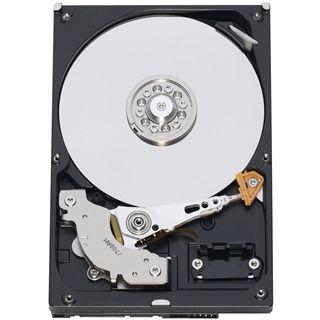 """250GB WD AV Serie WD2500AVKX 16MB 3.5"""" (8.9cm) SATA 6Gb/s"""