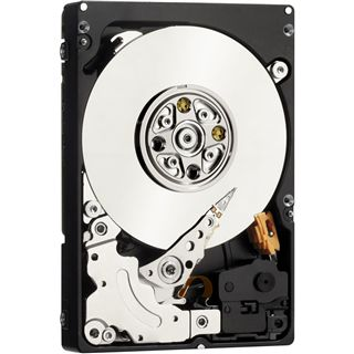 """300GB WD XE Enterprise WD3001BKHG 32MB 2.5"""" (6.4cm) SAS 3Gb/s"""