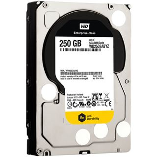 "250GB WD RE4 WD2503ABYZ 64MB 3.5"" (8.9cm) SATA 6Gb/s"