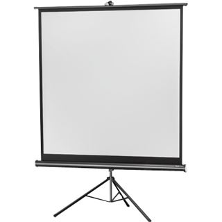 Celexon Economy tripod screen - Projektionsbildschirm mit Stativ - 188 cm ( 74 Zoll )